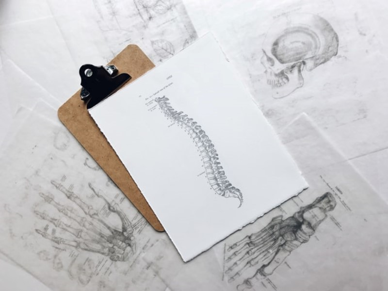 Spine Chiropractic Care