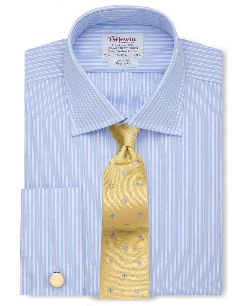 Regular Fit Blue Slim Stripe Poplin Shirt