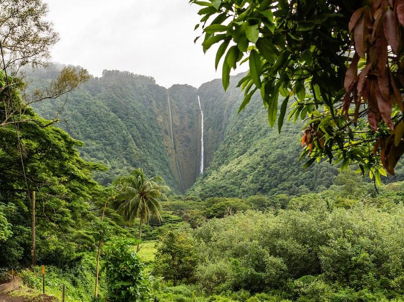 Hawaii Car Travel Tips