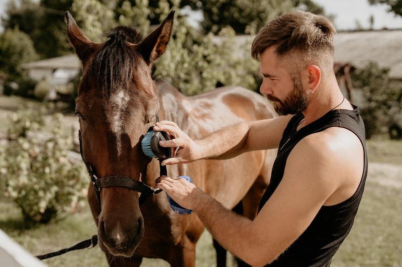 Challenge Horse Riding